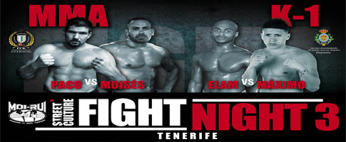 fight night 3 Tenerife