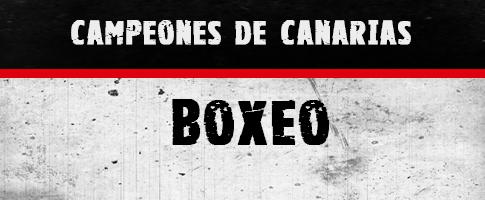campeones canarias boxeo