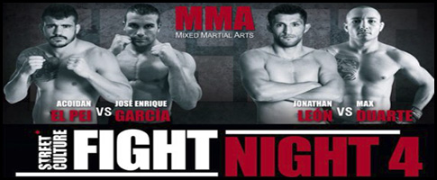 fight night 4