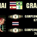 Cartel velada Muay Thai, Grappling, K1