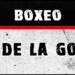 Resultados velada boxeo en La Gomera