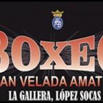 Gran velada amateur Boxeo