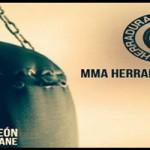 Velada MMA en La Palma