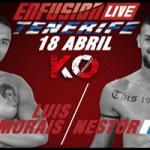 Nestor Vs Luis Morais, ENFUSION LIVE Tenerife