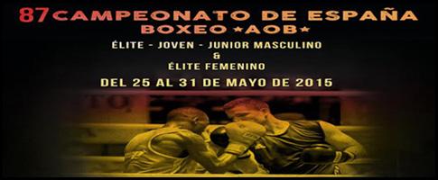 campeonato españa boxeo 2015