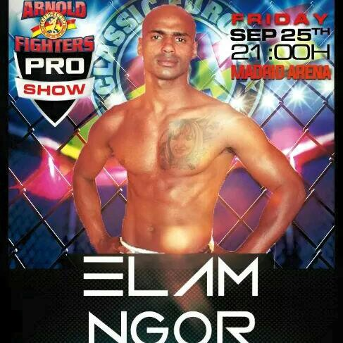 elam arnold fighters