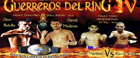 guerreros del ring IV recortada