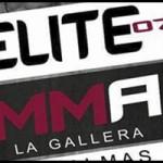 Cartel velada, Elite MMA VII