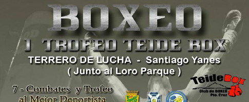 boxeo trofeo teide box portada