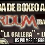I velada Boxeo Amateur, Werdum