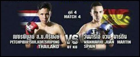 combate wanmario
