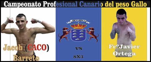 campeonato profesional canario