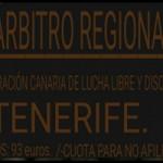 Curso arbitraje regional de MMA