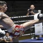 Fotos campeonato de Europa Muay Thai 2ª parte PROFESIONAL