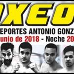 Boxeo en Tejina
