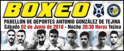 boxeo tejina