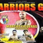 The Warriors Glove V