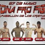 Vídeo resumen, Arona Pro Fight