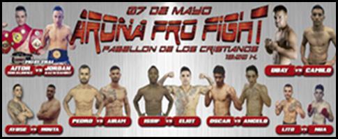 aron pro fight